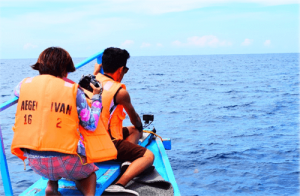 Dolphin Watching Magpalawantours